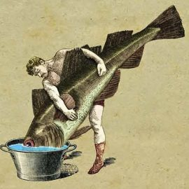 Comment noyer le poisson